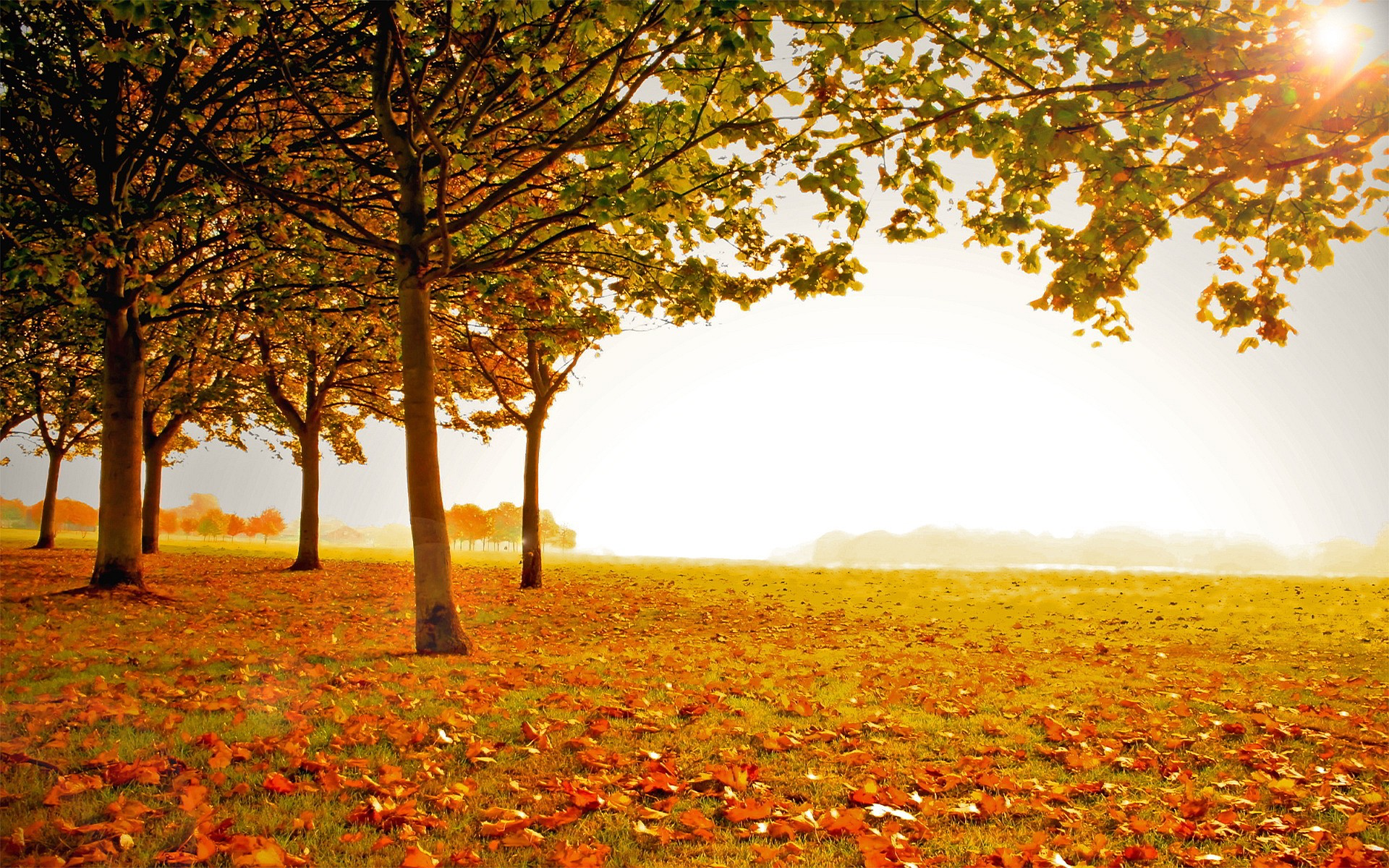 , Five Reasons to Sell Your Home in Autumn